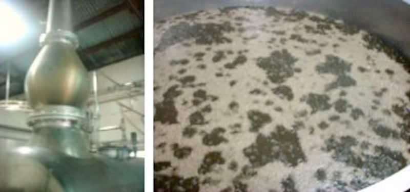 <蒸留釜。常圧発酵で原料の風味を残す。=左><黒麹菌で発酵させる泡盛。クエン酸が豊富な黒麹を使うことによって、温暖な気候ゆえに雑菌が繁殖しやすい沖縄でも、健全な酒造りができるのだ。=右>
