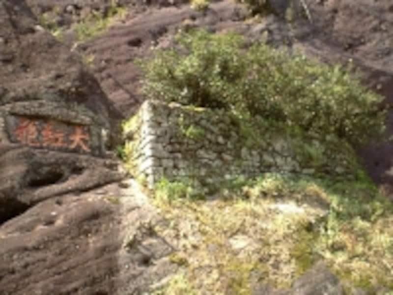 武夷山の「武夷岩茶」は最高級品