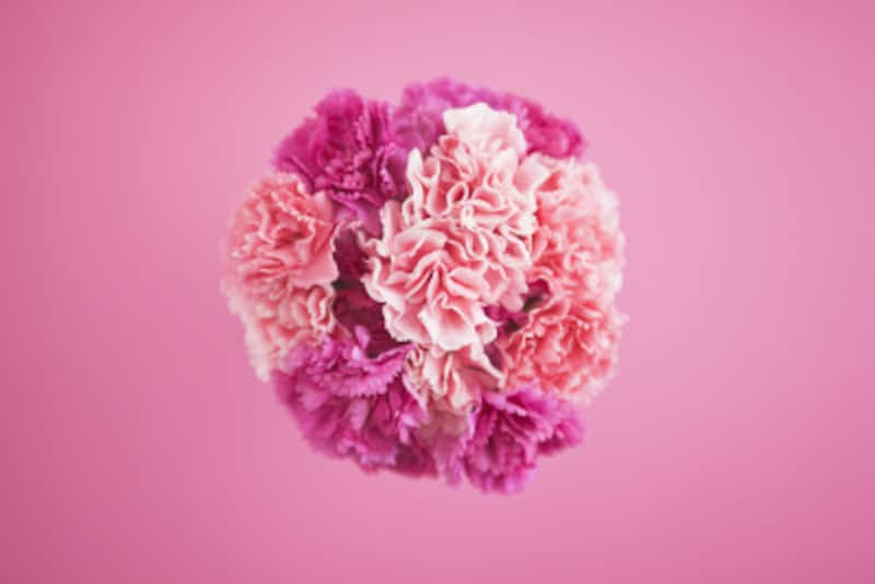 幸せ色の代表格であるピンクは組み合わせ次第でキュートなだけではなく大人っぽい雰囲気にも