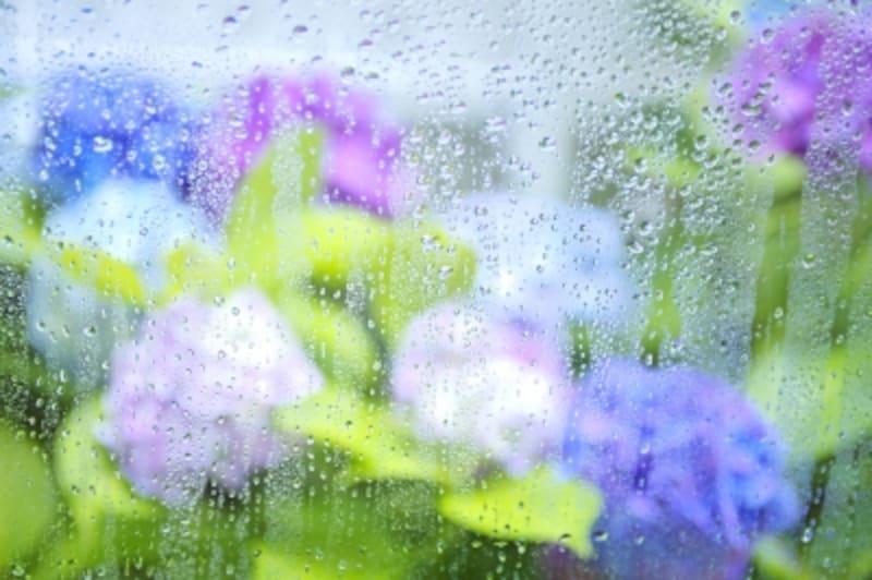 梅雨の時期、カビがまったくない住まいなんてありえませんが、それでもできる対策もあります