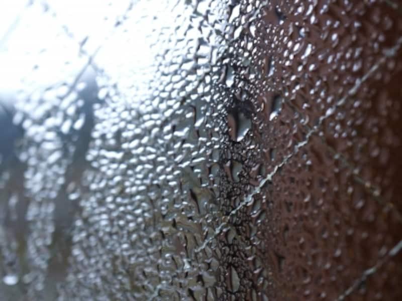 最近の住まいは密閉されて気密性が高いため、お風呂場に生えるようなカビは今や住まいのいたるところで見られているわけです。特に結露した窓際あたりは要注意です