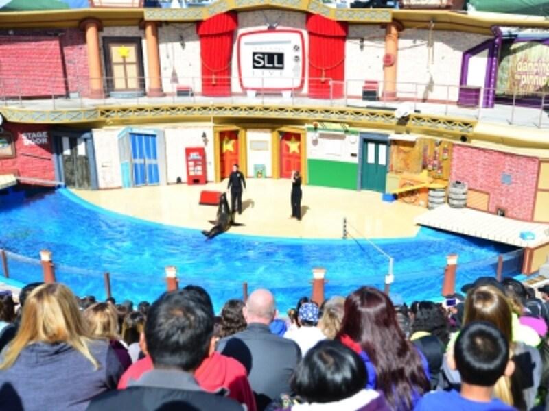 観客を笑いの渦に巻き込むアシカのコメディーショーは