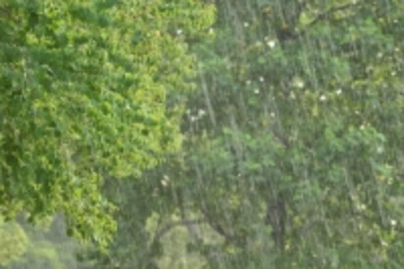 大雨が降ると土砂災害が起きやすい