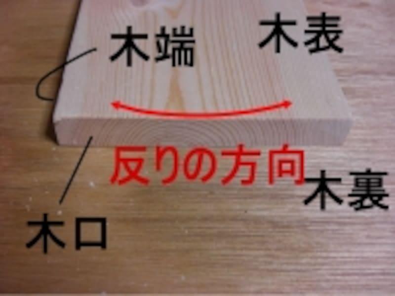 樹皮側を木表、中心側を木裏