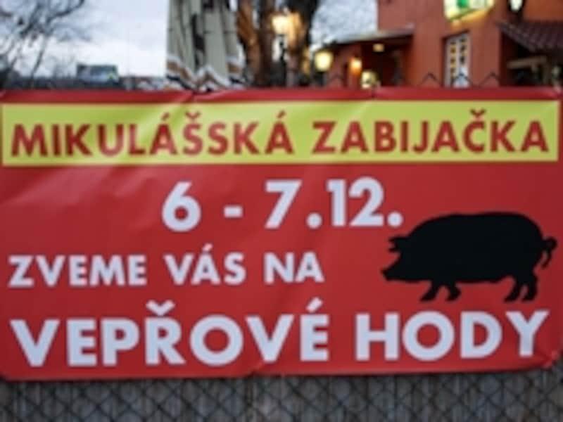 チェコ語には独特のアクセント記号がいくつかあり、その発音はむずかしいものが多いです