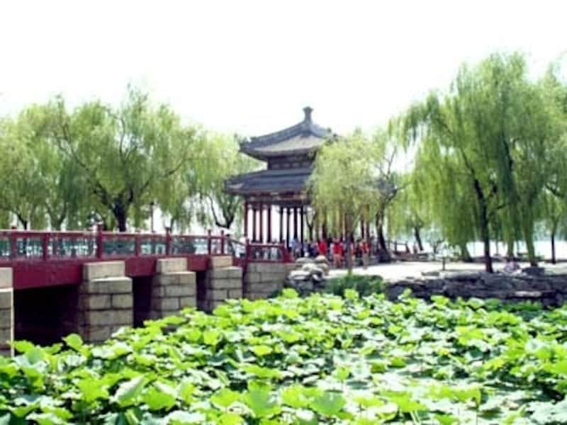 北京の夏。蓮の葉が茂る頤和園の昆明湖