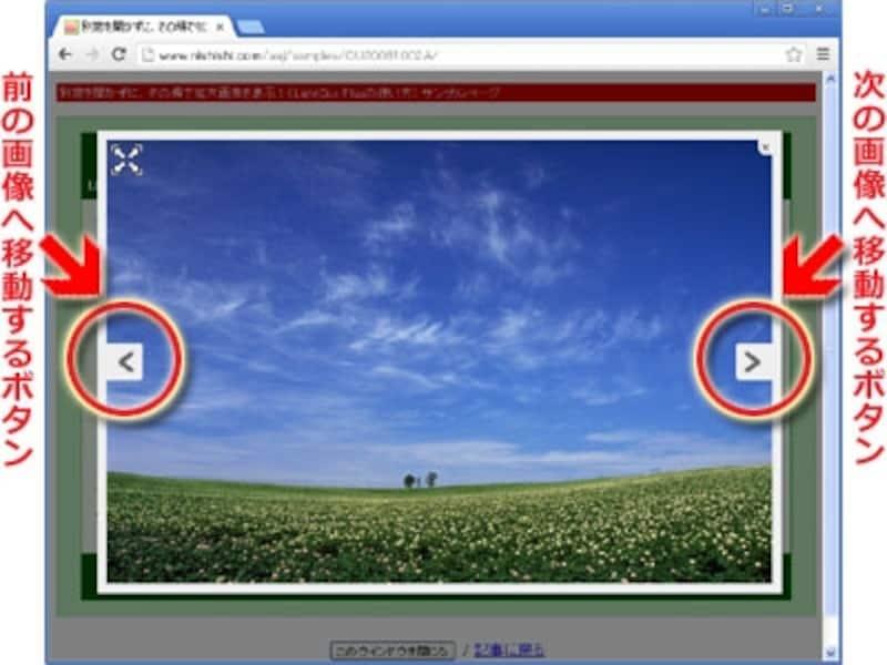 前後の拡大画像に移動するボタンが表示される