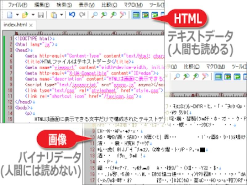 HTMLはテキストデータだが、PNGやJPEG等の画像はバイナリデータ