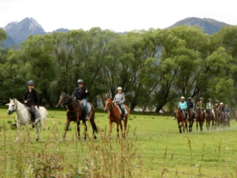 決まったコースではなく自然の中を進んでいく乗馬
