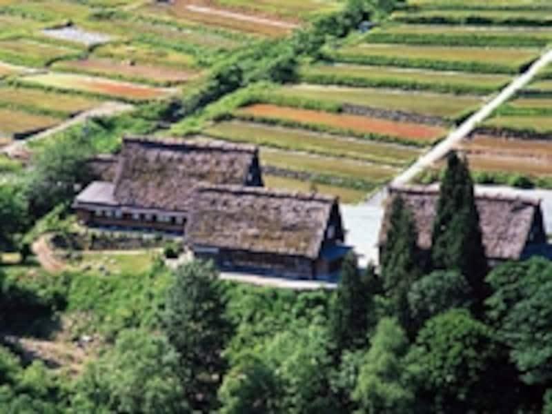 田畑に囲まれた家
