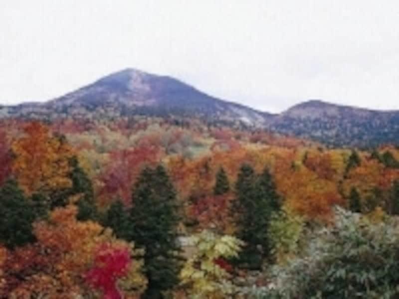 八甲田の紅葉風景。シーズン中は、県内外から多くの観光客が訪れます
