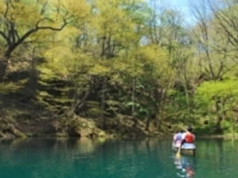 水鳥の目線で十和田湖の景色を感じる「カヌーツアー」
