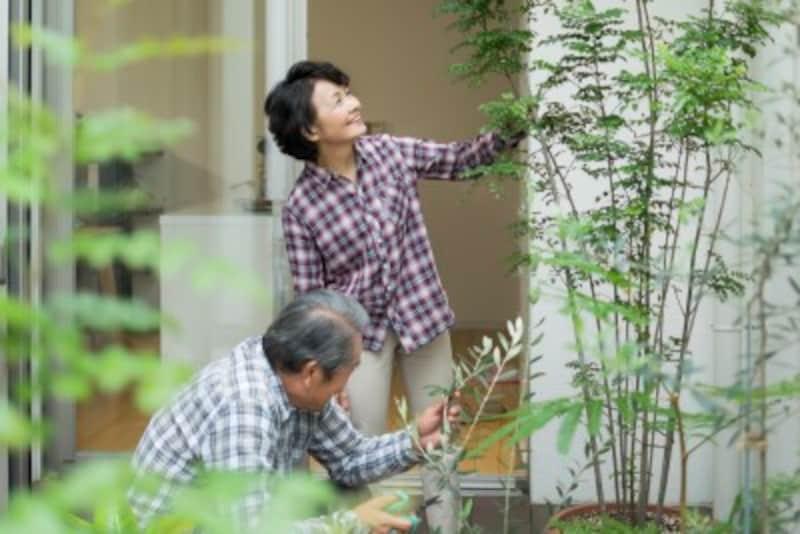 ベランダの点検時などに移動できるよう、植物は植木鉢に植えましょう