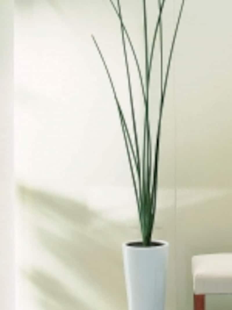 気になる汚れから壁面をガードするセラミックパネル。トイレや洗面、キッチンの壁面に。焼き物らしい釉薬の素材感を生かしたタイプ、木目や石目などを再現した柄物、花柄など多数の色柄も。[ハイドロセラ・ウォール]undefinedTOTOundefinedhttp://www.toto.co.jp/
