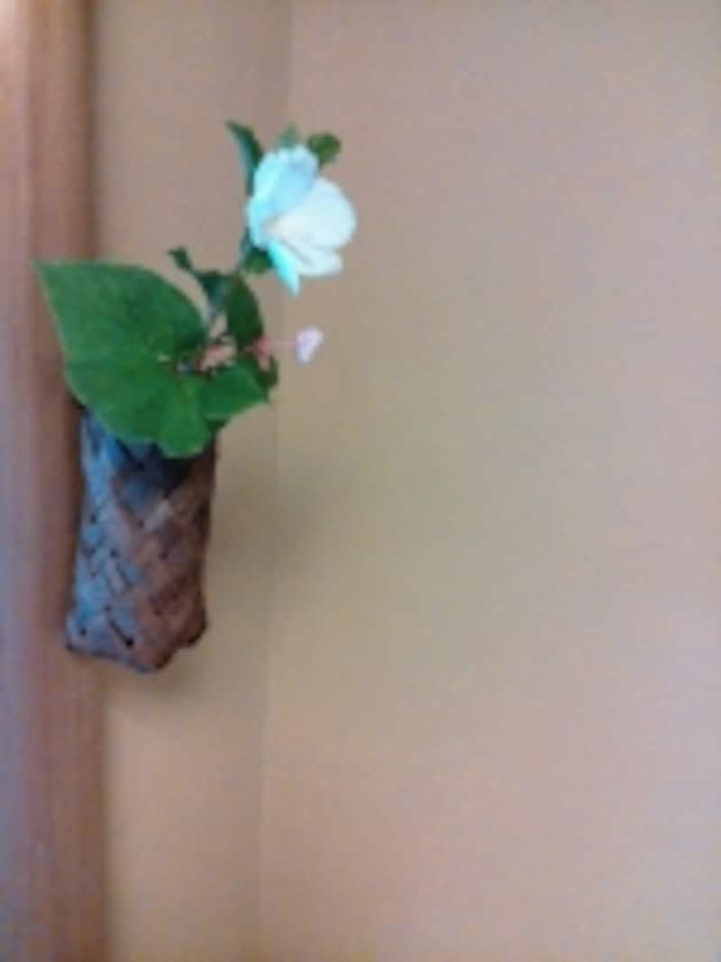 本格的な聚楽壁で落ち着いた和室に