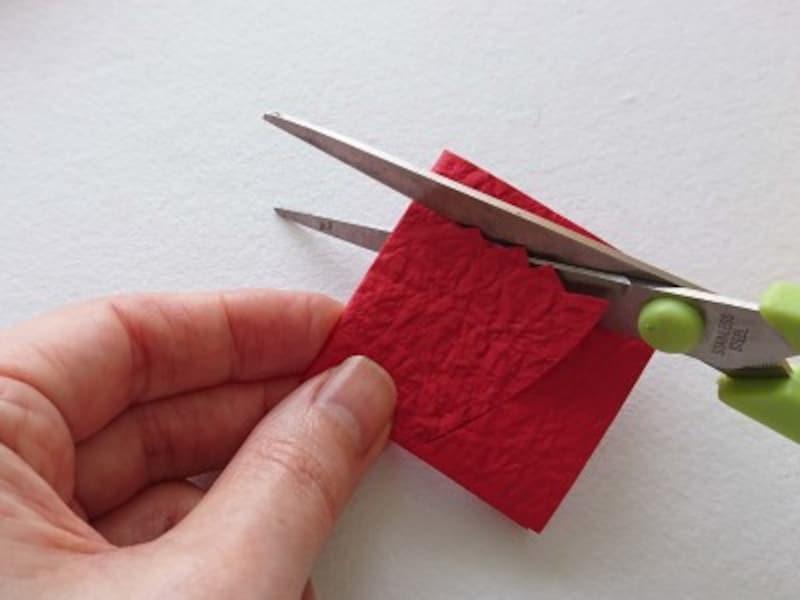 カーネーションを切る時は和紙を折りたたんで切る