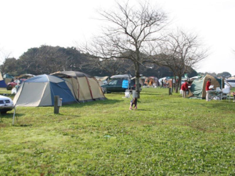 秋キャンプ冬キャンプ子連れにおすすめ 成田ゆめ牧場