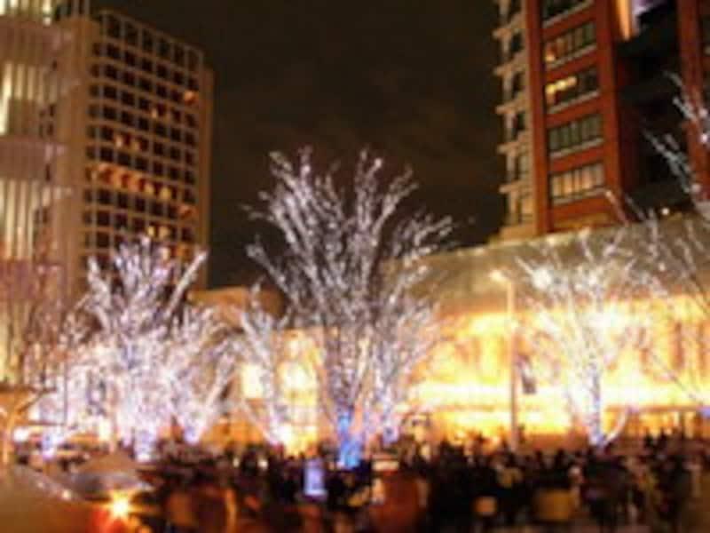 街中がクリスマス一色です!