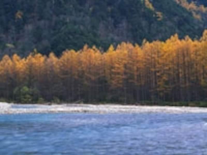 城の材料となる木を伐り出し筏で流し墨俣に城を造る