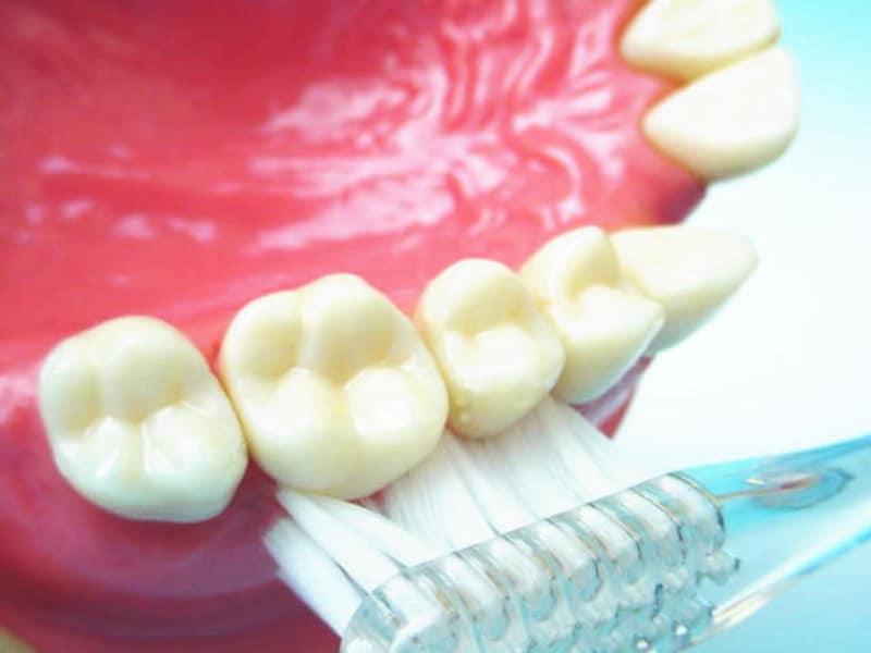 歯の磨き方 その2