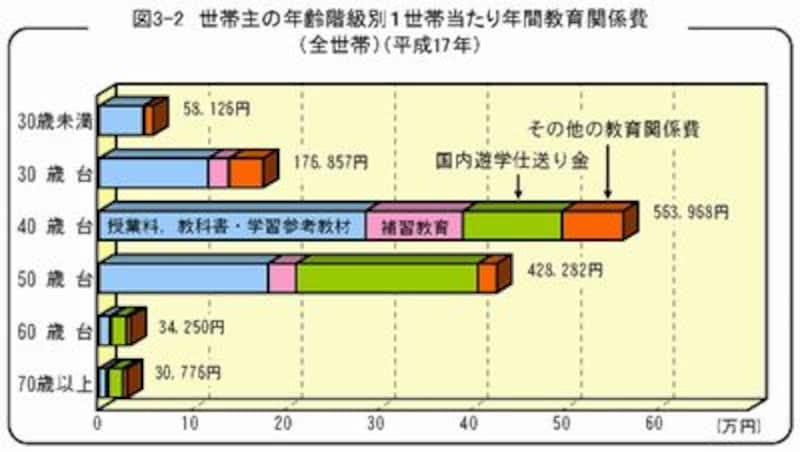 内閣府による家計統計調査平成17年