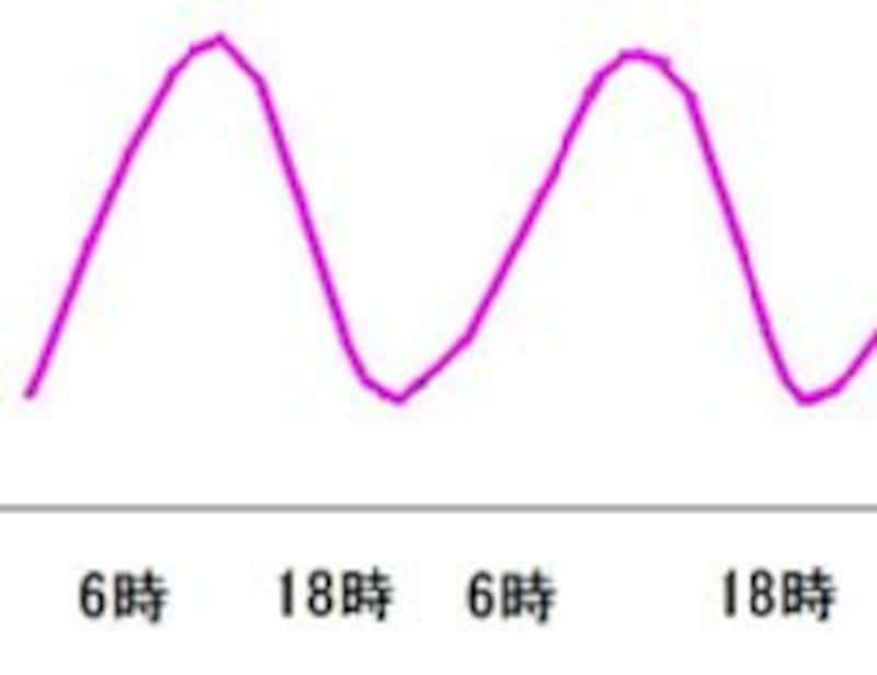 一日の中でも体温は規則的に変動