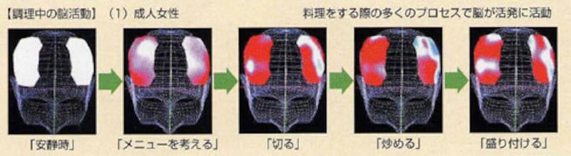 近赤外線計測装置による成人女性を対象とした脳の活動