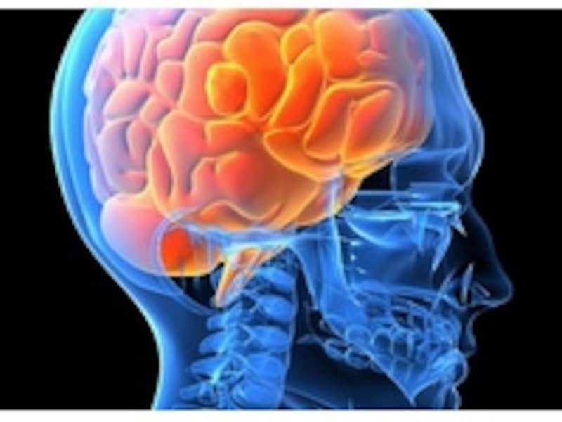 神経細胞が無数につながりネットワークを作り上げています