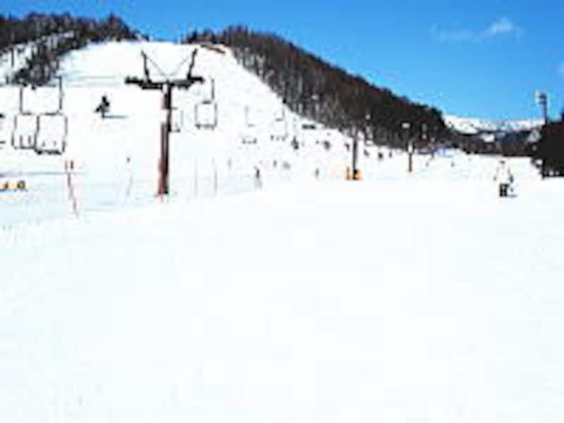 白いスキー場