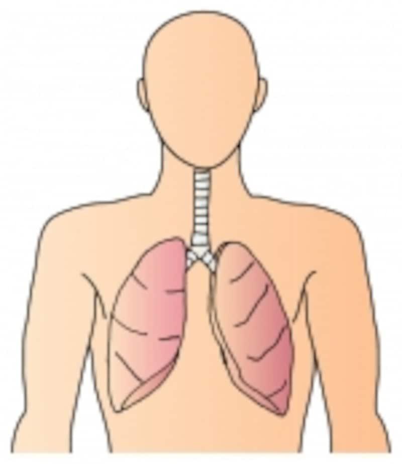 肺炎は現在も油断できない病気です