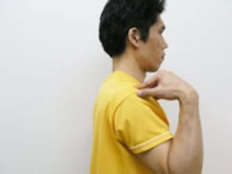 5.肘を体の横へ戻しましょう