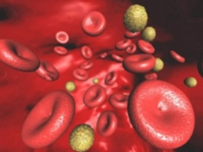酸素を運ぶ赤血球が壊れたり、作られなくなって、貧血になってしまいます