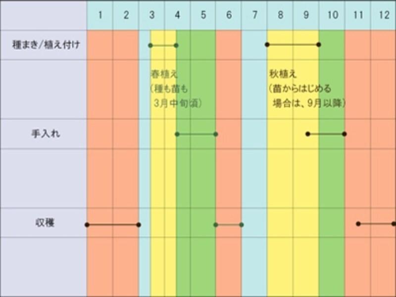 ブロッコリー,栽培カレンダー
