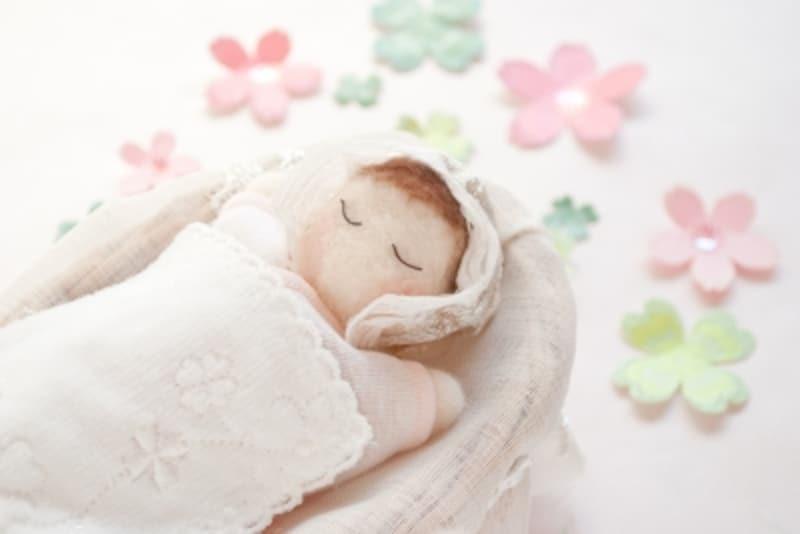 赤ちゃんが女の子だとしたら、将来に卵子となる原始卵胞が早くも作られています