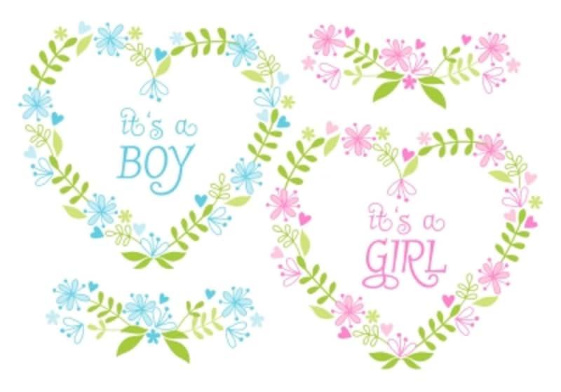 胎児の生殖器ができあがる時期
