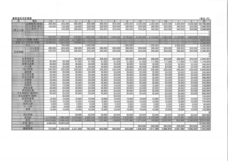 事業計画書 資金収支計画表