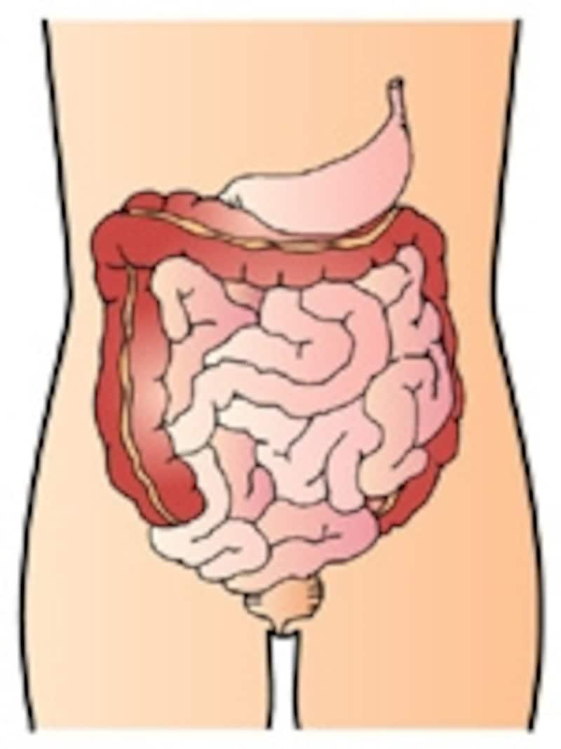 体の深部が冷えると胃腸が不調になることがあります