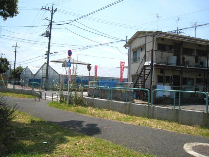 篠崎公園近くのアパート