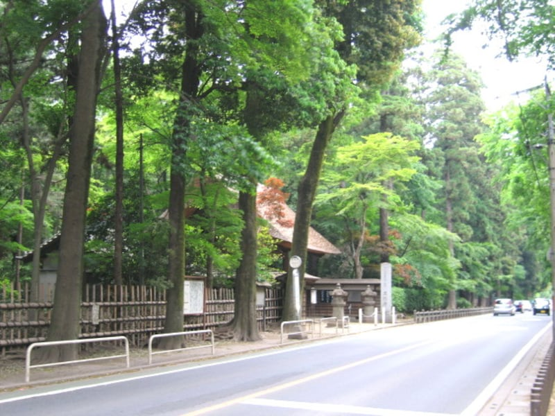 緑の多い平林寺
