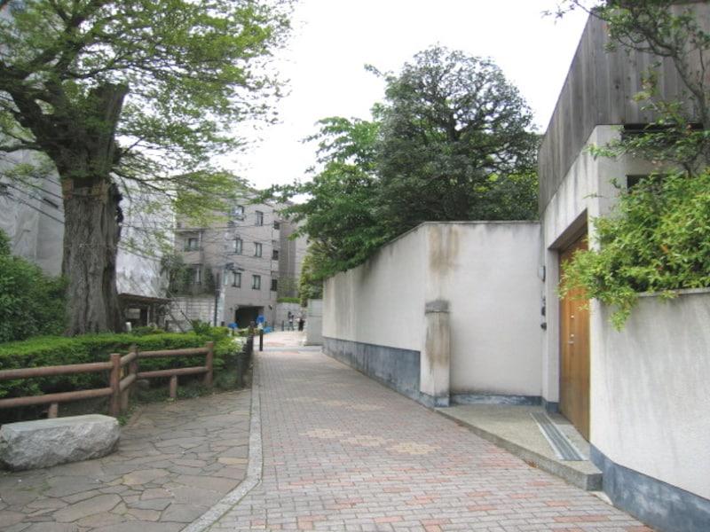 文京区の住宅街