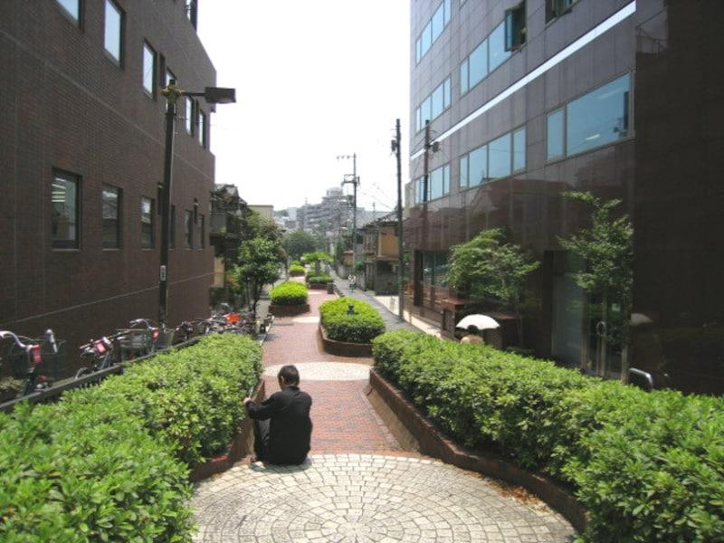 谷端川の緑道