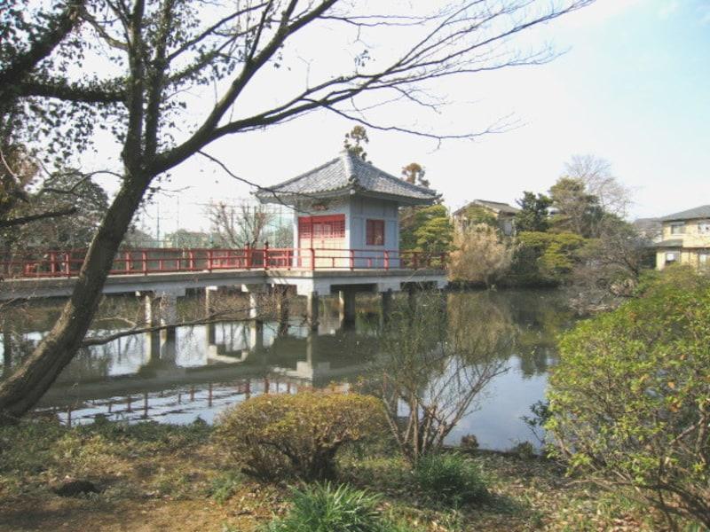 高源院の鴨池