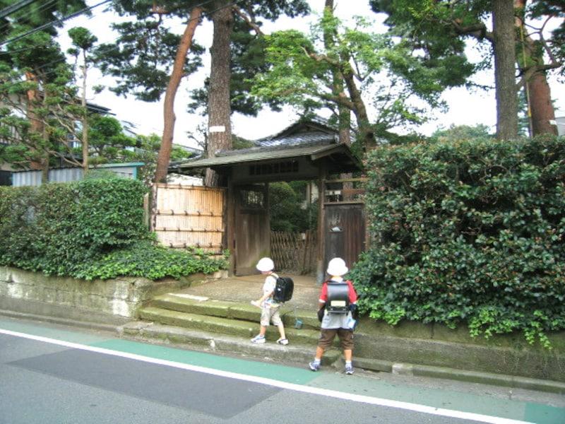 桜の住宅街