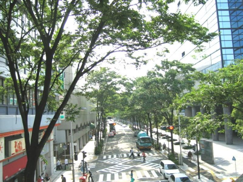 武蔵小杉タワープレイス