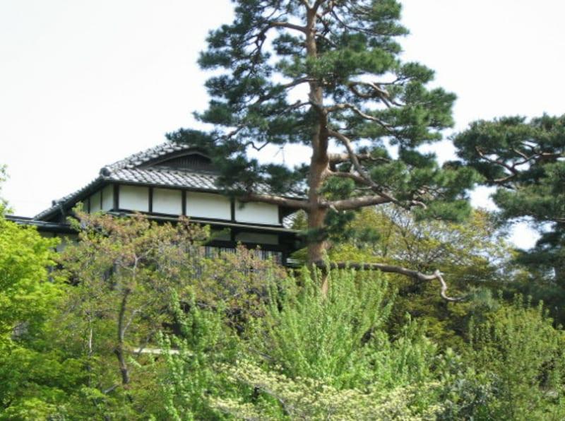 代沢周辺のお屋敷