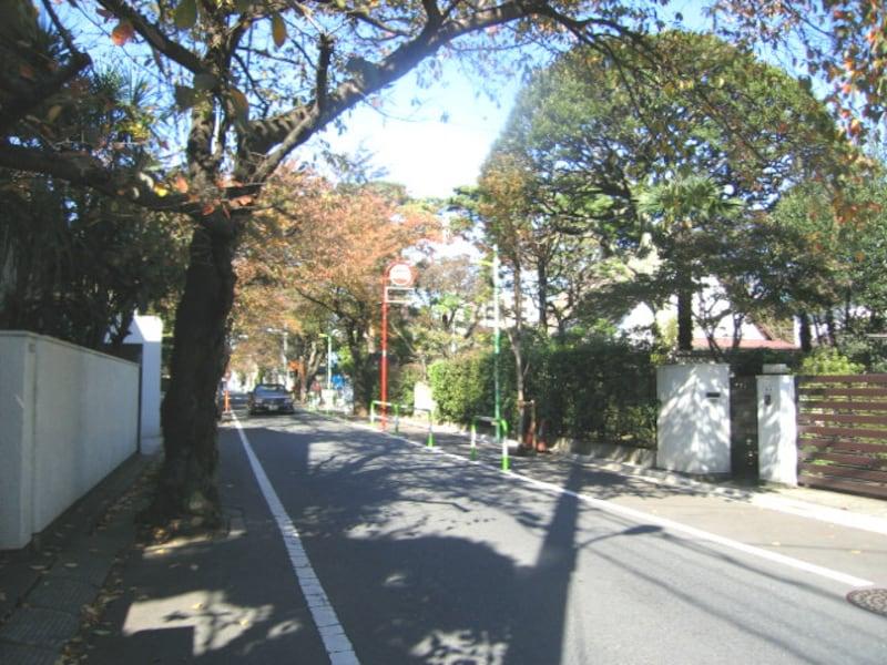 深沢のお屋敷街