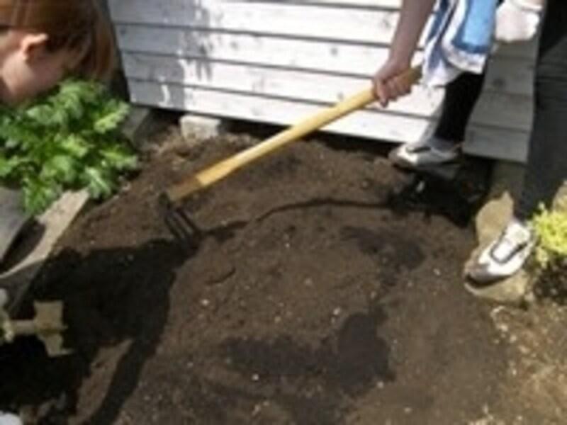 家庭菜園の土作りの手順3。たい肥や炭を、深くしっかりと混ぜ込みます