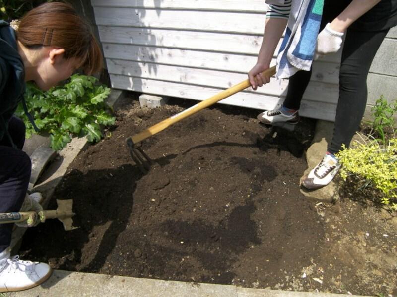 家庭菜園の土作り