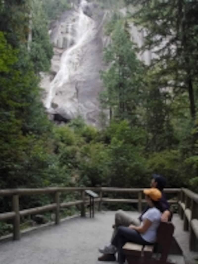 森の間に見えるシャノンフォールズは道路からすぐundefined(C)TourismBC