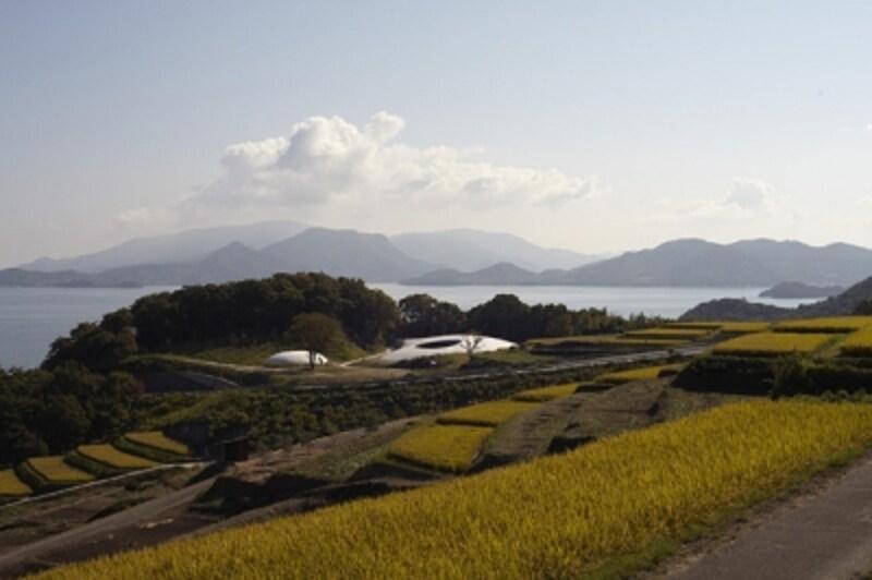 豊島美術館写真:森川昇